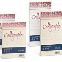 BUSTA CALLIGAPHY MILLERIGHE FAVINI 11X22 G100 CF.25 AVORIO