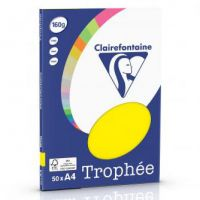 RISMA CLAIREFONTAINE TROPHE A4 G160 FF50  GIALLO SOLE