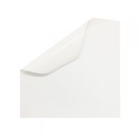 ETICHETTA ADESIVA PVC BIANCO OPACO CM.5X10 STAMPA DIGITALE
