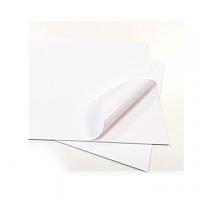 ETICHETTA ADESIVA PVC BIANCO CM4X15,5 ST.1 COLORE